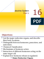 The Endocrine System Part 1