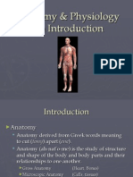 Lecture 1 Anatomy & Physiology