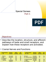 Special Senses Part 1 (Taste & Smell)