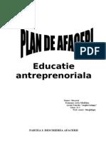46458218 Plan de Afaceri Gradinita Privata