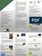 Ielts Preparation Brochure