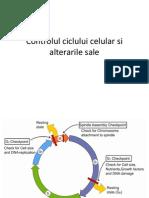 2Controlul Ciclului Celular Si Alterarile Sale