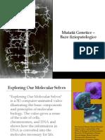 1Mutatii Genetice-baze Fiziopatologice