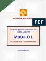 CURSO GRATUITO DE REIKI ANDINO 2014 . PRIMER MÓDULO