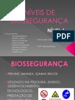 NÍVEIS DE BIOSSEGURANÇA 2