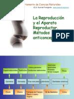 Aparato Reproductor Metodos Anticonceptivos