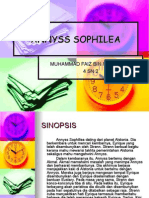 ANNYSS SOPHILEA