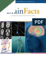 Brain Facts Book