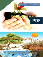 ecosistema