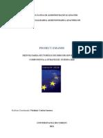 Dezvoltarea Sectorului de IMM - Componenta a Strategiei Europa 2020