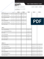 Workout Sheet-hybrid p90x San