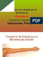 9na Clase Meridiano de Corazon e Intestino Delgado