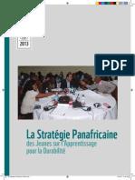 La Strategie Panafricaine Des Jeunes Sur Lapprentissage Pour La Durabilite