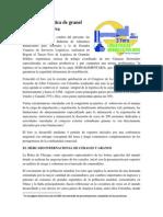 HACIA UNA LOGISTICA DE GRANEL SOLIDO COMPETITIVA.pdf