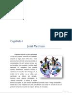 Joint Venture Monografia