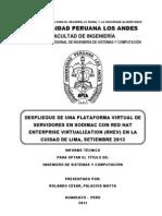 Cesar Palacios Mayta Informe Final