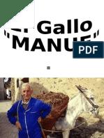 Gallo Manue