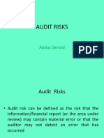 Audit Risks