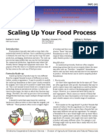 Scaling Up Your Food Process