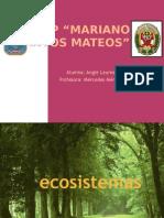 ecosistemas22