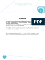 Configuraciones Internas de Los Dientes f