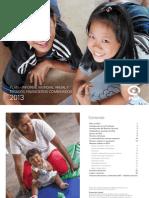 Informe Mundial Anual y Estados Financieros Combinados 2013