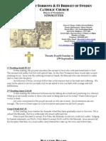 newsletter 2009-09-13