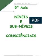 5A_AULA_NIVEIS_E_SUBNIVEIS