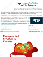 Eukaryotic Cell Structure Function Biology Lecture PowerPoint VMCct