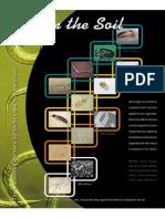 LifeInTheSoil Ento PDF Standard
