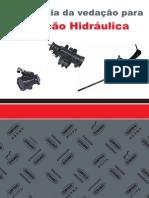 Apostila-Direção-Hidraulica
