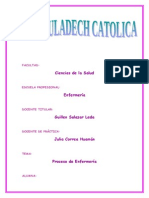 Proceso Enfermeria ADULTO II