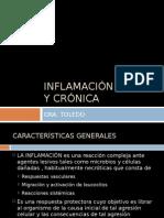 Inflamacin Aguda y Crnica