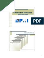 6 PMI - GP8-Gestion de Los Riesgos