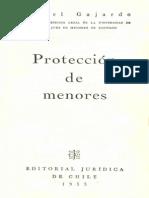 Protección_menores- Samuel Gajardo