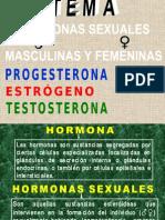 LAS HORMONAS sexuales