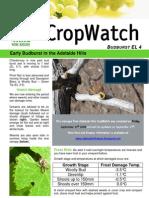 Adelaide Hills Crop Watch 100909