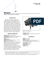 SWETENIA BING Hort Ufl Edu Database Documents PDF Tree_fact_sheets Swimaha