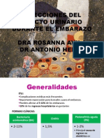 Ivu Embarazo