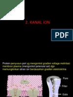 2-kanal-ion