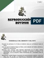 6-reproduccinenbovinos-091203213940-phpapp01