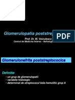 23520251-Glomerulopatia-poststreptococica
