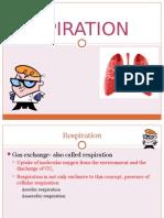 [BIO] Respiration
