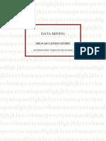 DATA MINING.doc