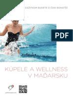 Kúpele a wellness v Maďarsku
