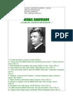 Program Sadoveanu