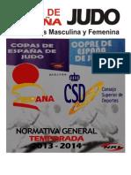 Normativa Copas Esp 2013-2014