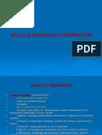 Boli Ale Aparatului Respiratori