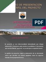Presentaci_n Prefil de Proyectos