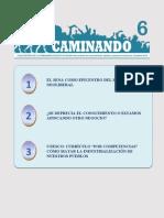 CAMINANDO 6